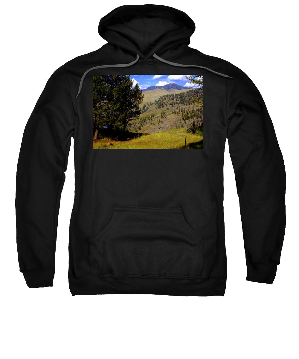Yellowstone National Park Sweatshirt featuring the photograph Along The Hell Roaring Creek Trail by Marty Koch