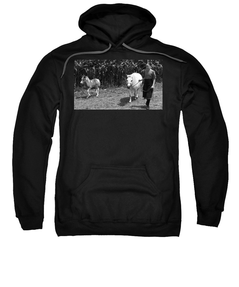 Amish Girl With Her Colt Sweatshirt featuring the photograph Amish Girl With Her Colt by Eric Schiabor