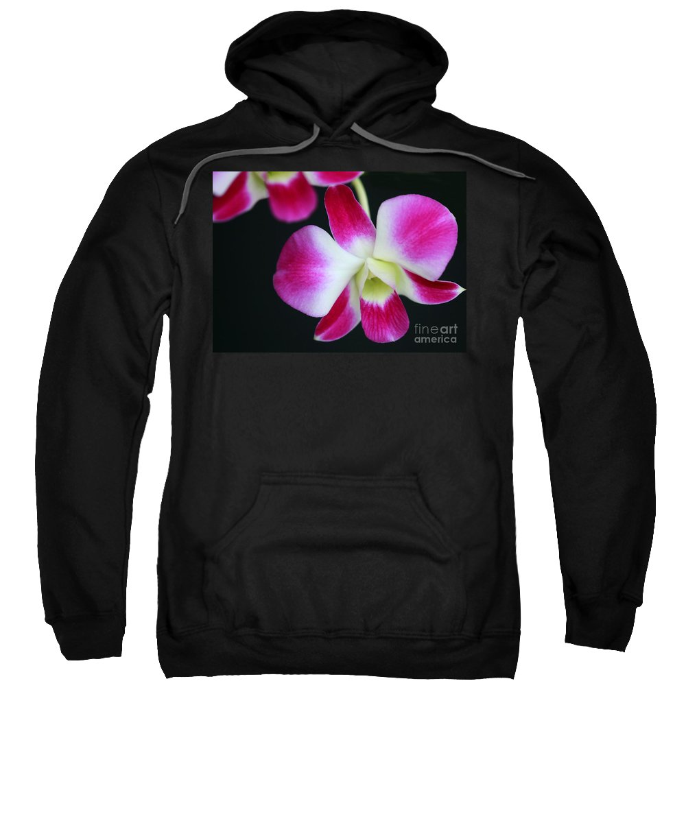 Flower Sweatshirt featuring the photograph An Orchid by Sabrina L Ryan