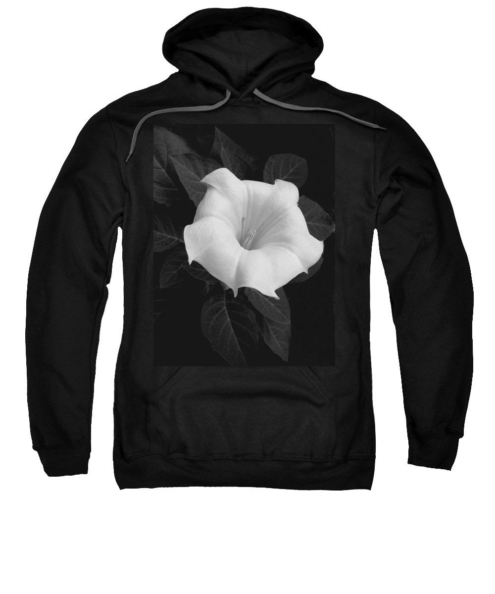 Daturia Sweatshirt featuring the photograph Angel Trumpet by Tom Reynen
