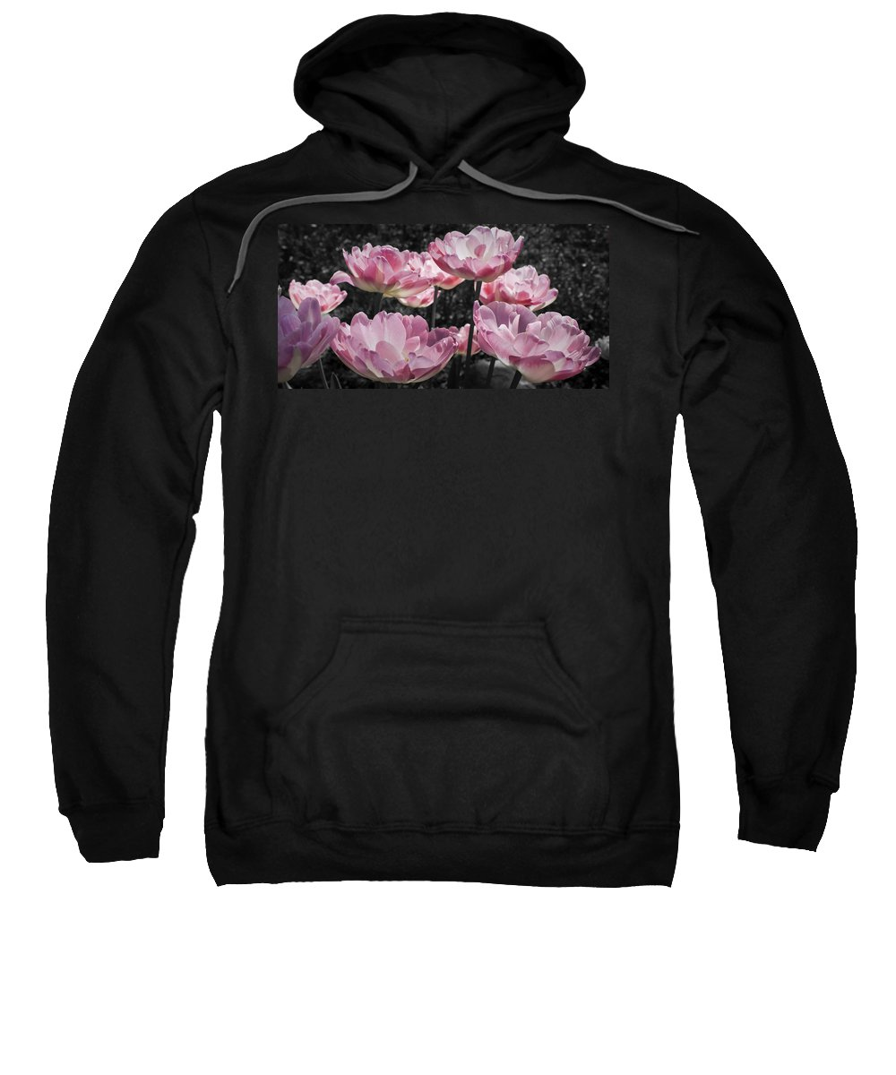 Pink Sweatshirt featuring the photograph Angelique Peony Tulips by Teresa Mucha