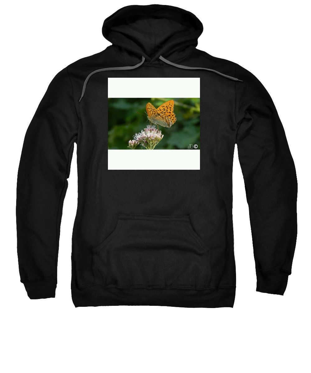 #butterfly #nature #macro #kosovo #photography #amazingshott Sweatshirt featuring the pyrography Animals by Joneta Bytyqi
