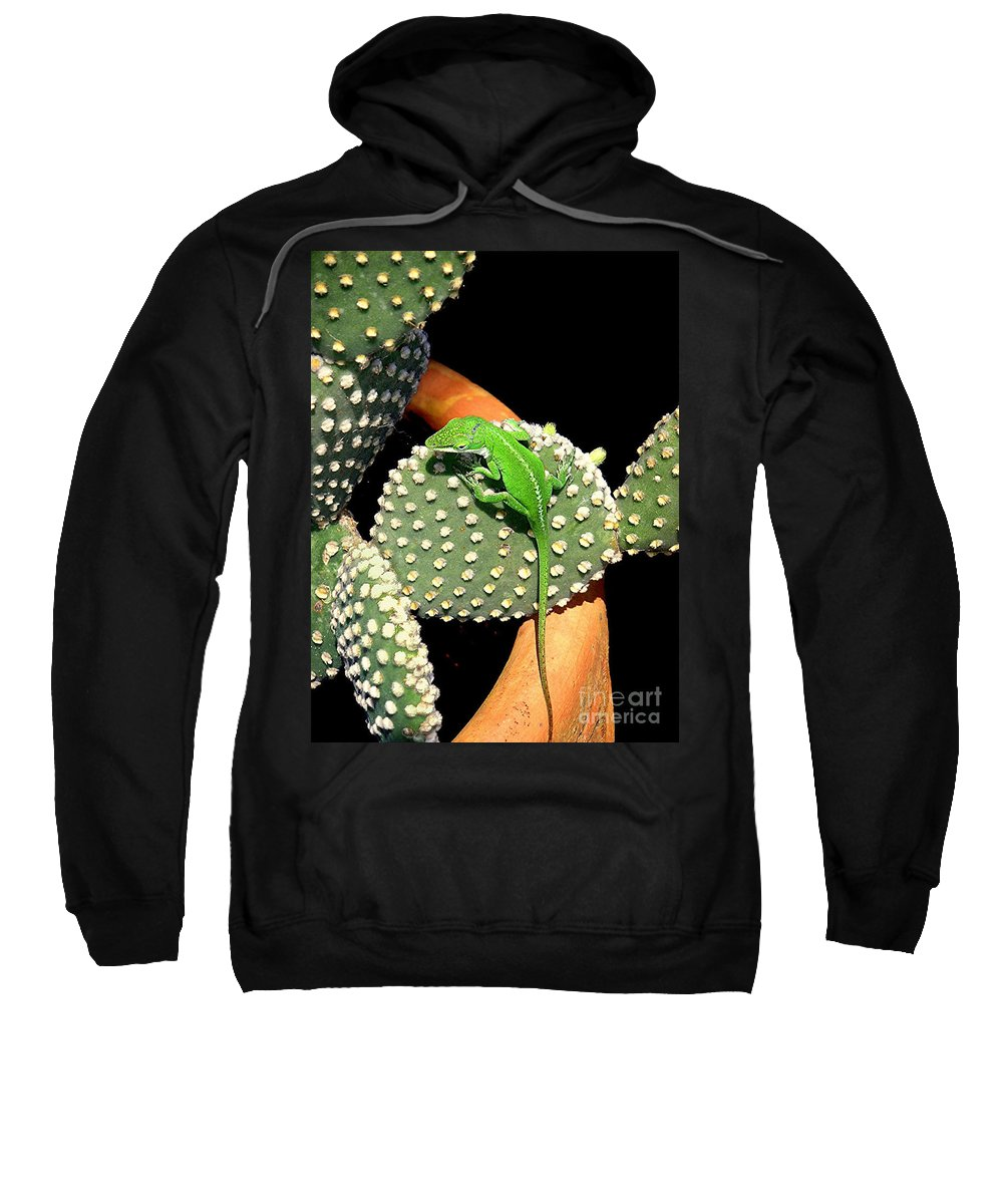 Nature Sweatshirt featuring the photograph Anole Hanging Out With Cactus by Lucyna A M Green