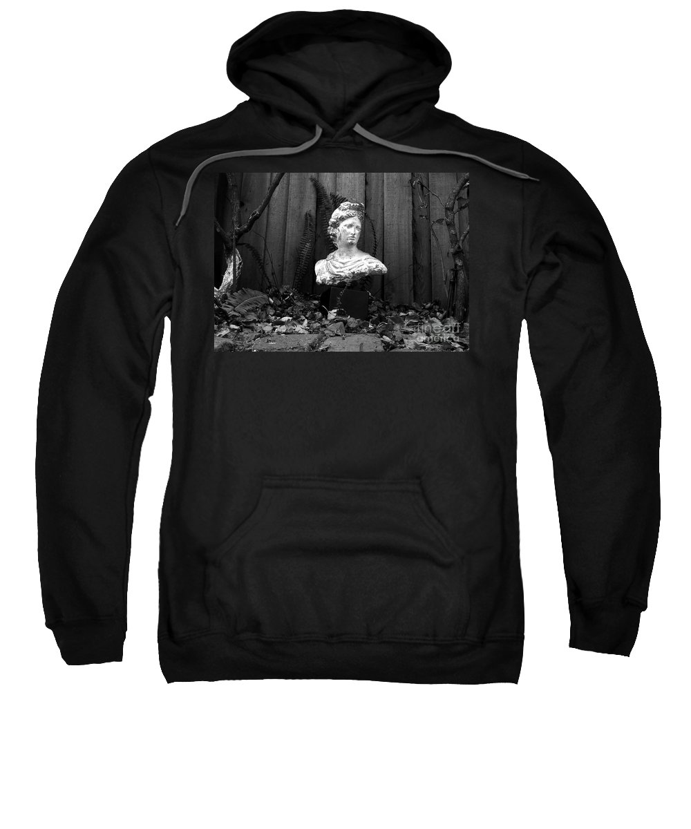 Apollo Sweatshirt featuring the photograph Apollo In The Backyard by David Lee Thompson