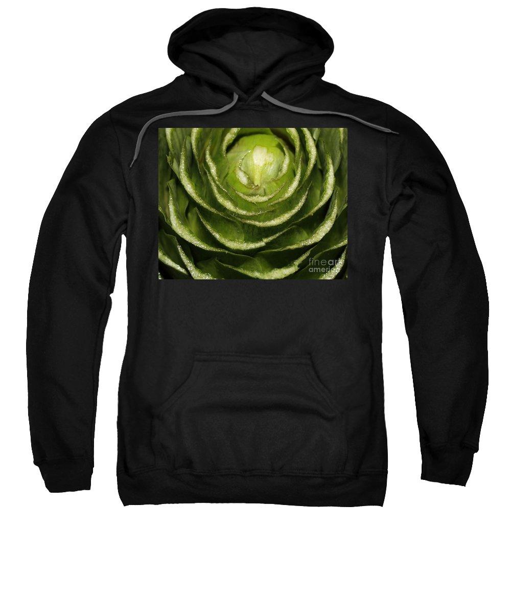 Veggies Sweatshirt featuring the photograph Artichoke Close-up by Carol Groenen