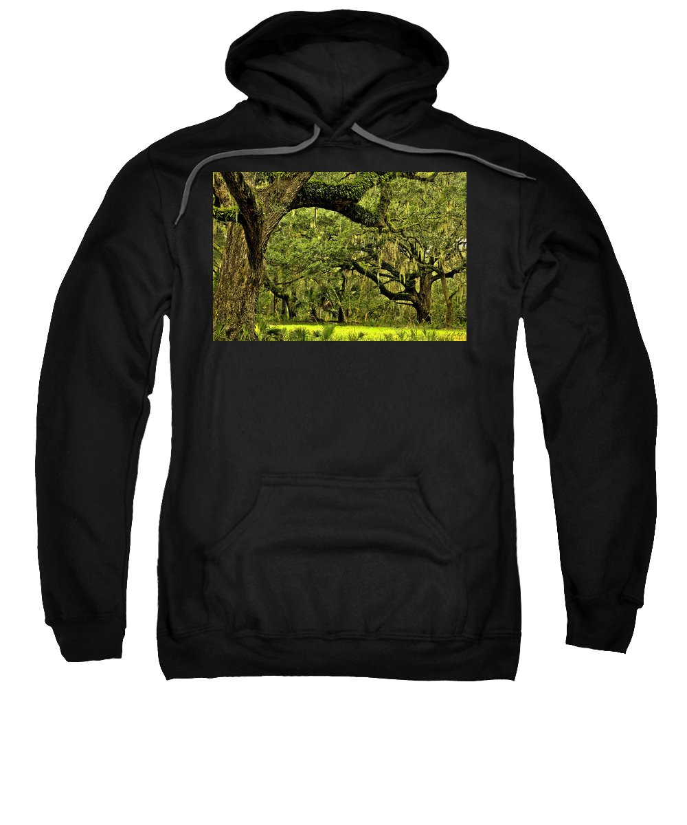 Tree Sweatshirt featuring the photograph Artistic Live Oaks by Phill Doherty