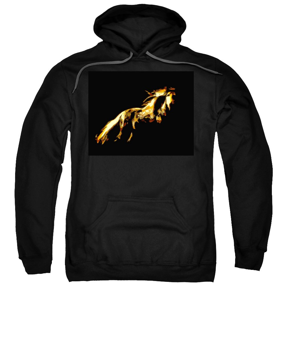 Horse Sweatshirt featuring the photograph Asian Stallion by Terry Fiala