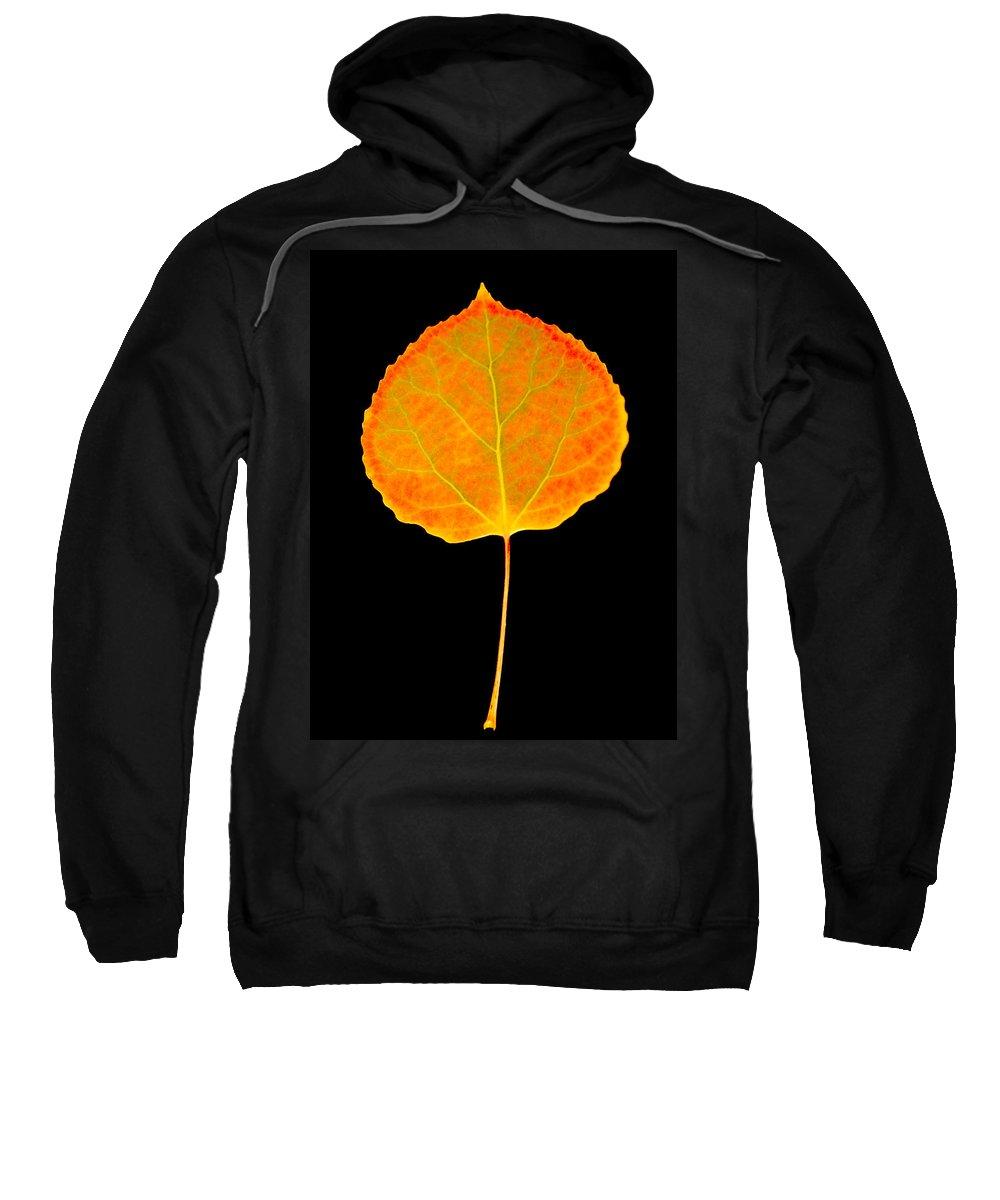 Leaf Sweatshirt featuring the photograph Aspen Leaf by Marilyn Hunt