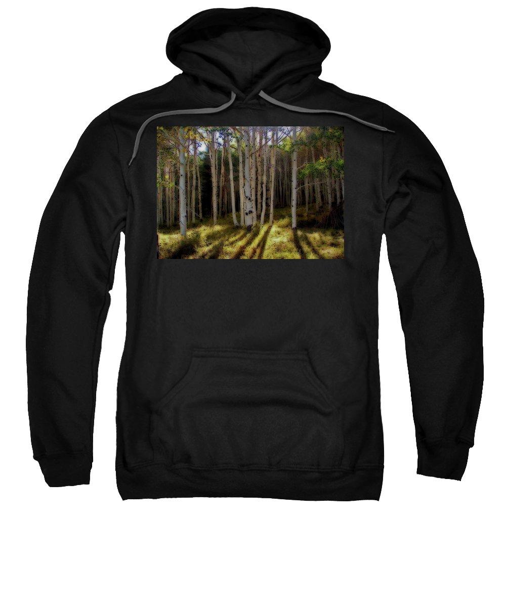 Aspen Sweatshirt featuring the photograph Aspen Sunbeams by Linda Weyers