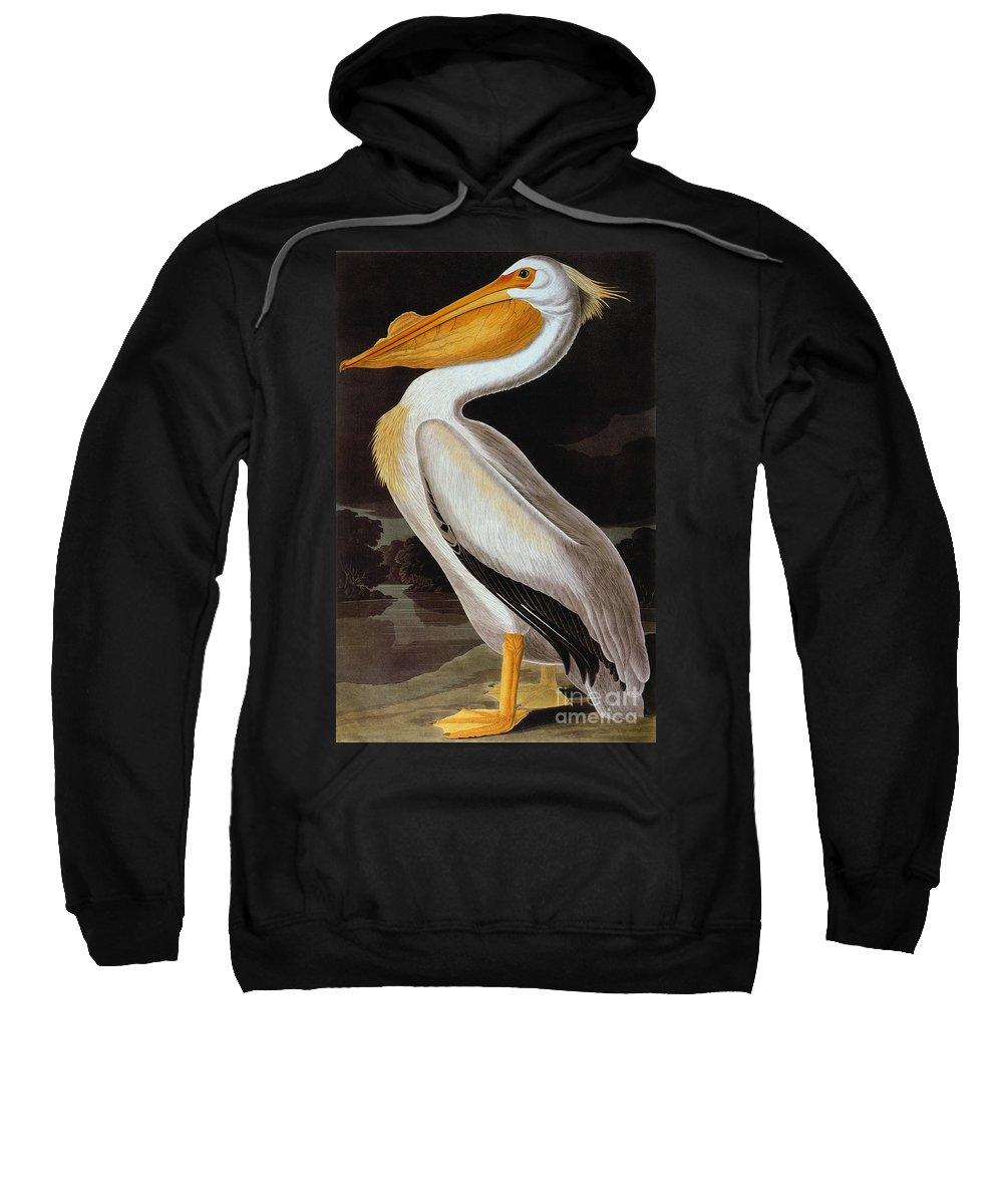 19th Century Sweatshirt featuring the photograph Audubon: Pelican by Granger