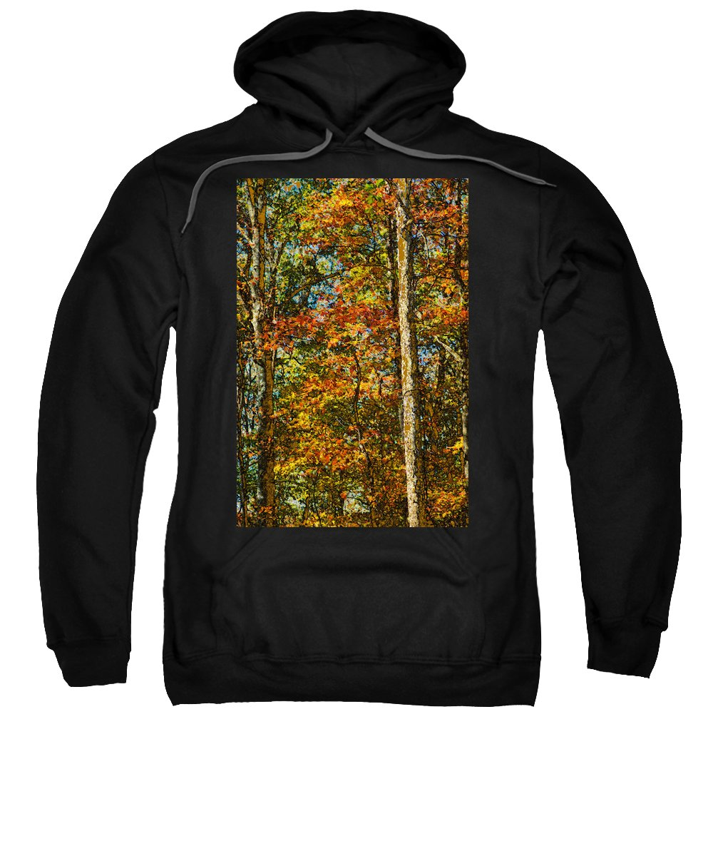 Autumn Sweatshirt featuring the photograph Autumn Forest by Shelley Dennis