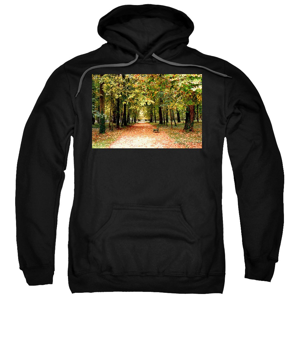 Autumn Sweatshirt featuring the photograph Autumn In The Park by Nancy Mueller