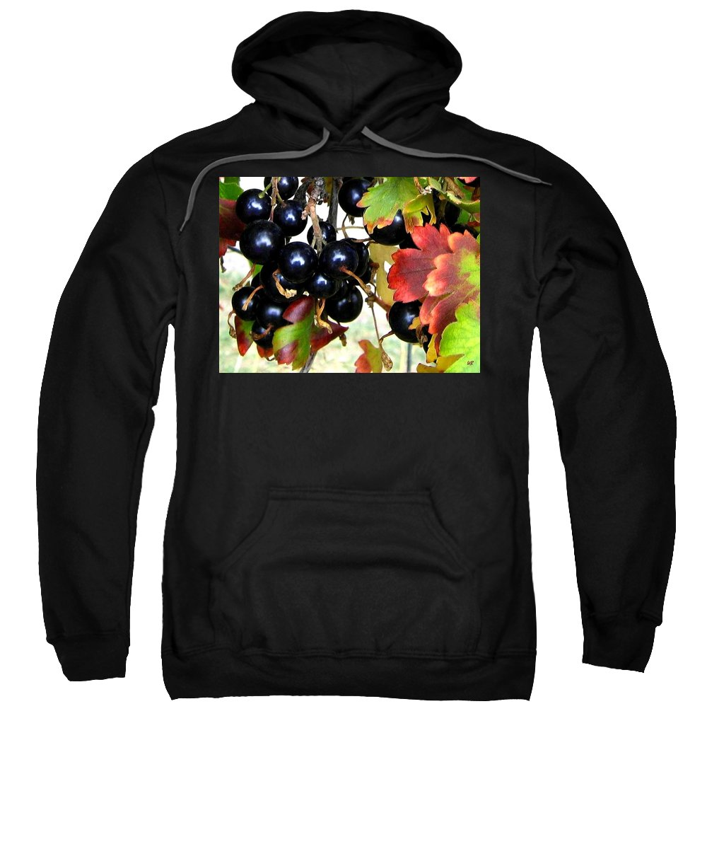 Autumn Sweatshirt featuring the photograph Autumn Jostaberries by Will Borden