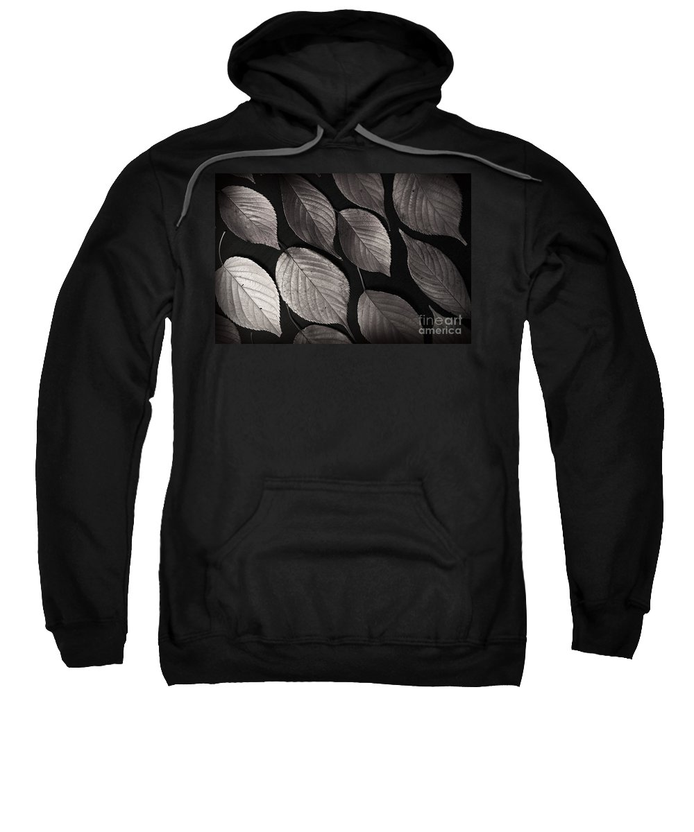 Leaves Sweatshirt featuring the photograph Autumn Leaves by Eena Bo