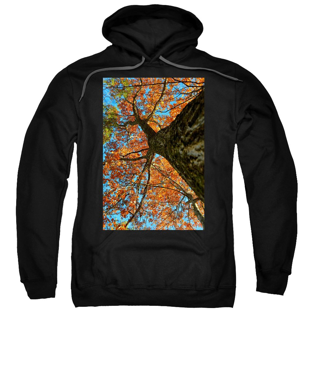 Ia Sweatshirt featuring the photograph Autumn Oak by Bonfire Photography