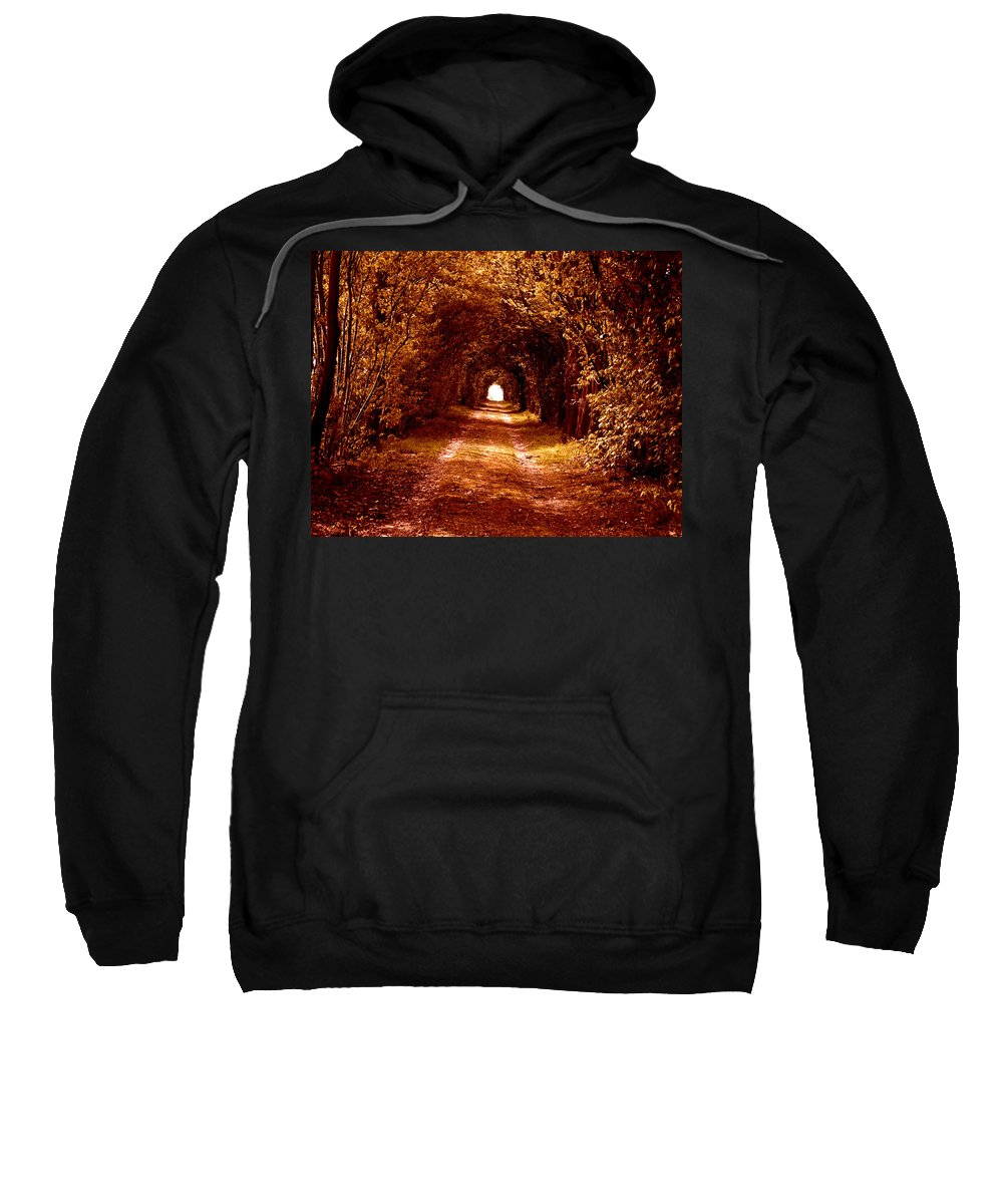 Forest Red Yellow Wood Green Path Way Grass Tree Trees Fairy-tale Wizzard Texture Vintage Old Antic Leaf Leaves Focus Lonley Nature Park Mystic Mystical Art Light Autumn Life Symbol Indian Summer Sweatshirt featuring the photograph Autumn Of Life by Steve K