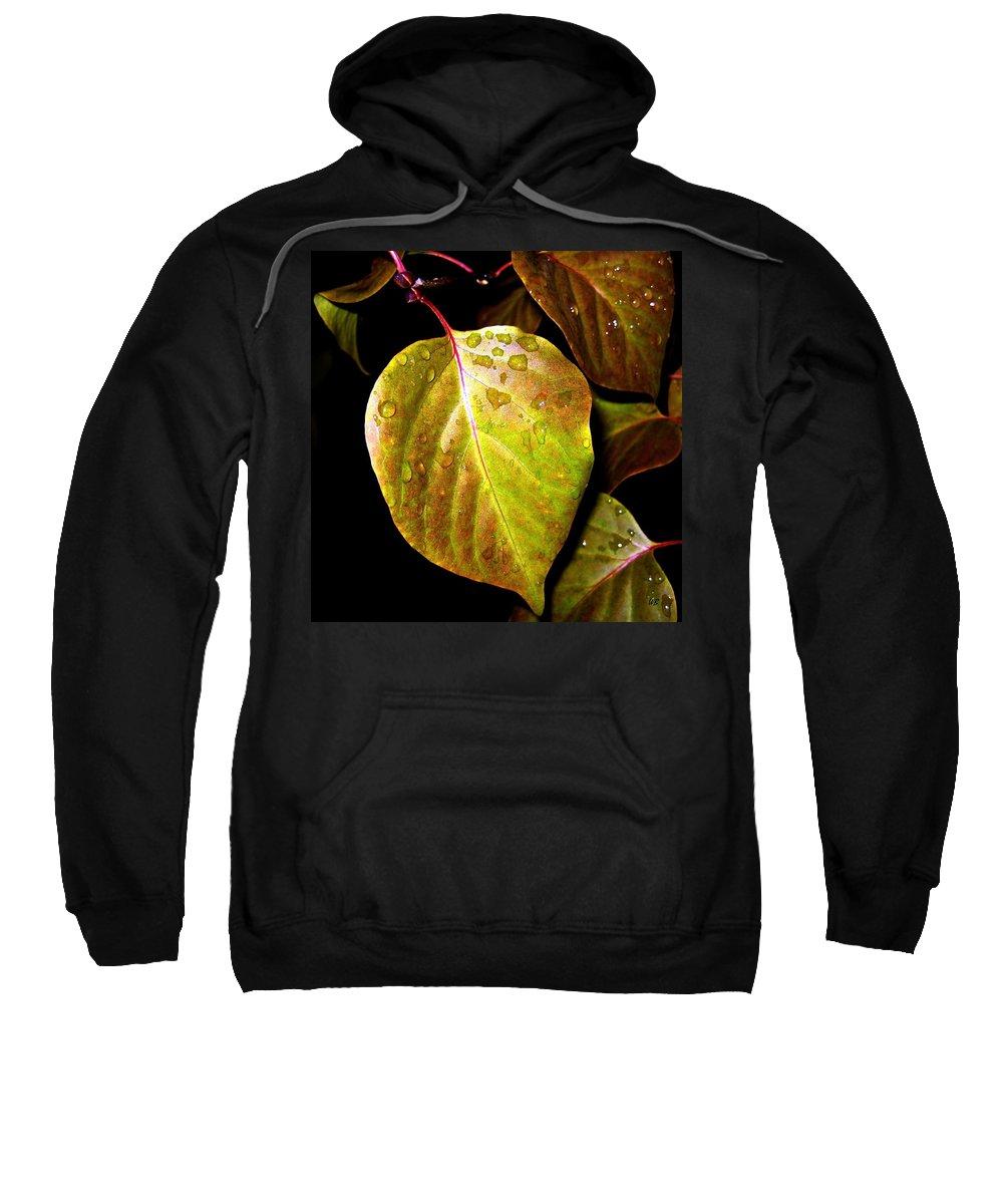 Autumn Sweatshirt featuring the photograph Autumn Rain by Will Borden