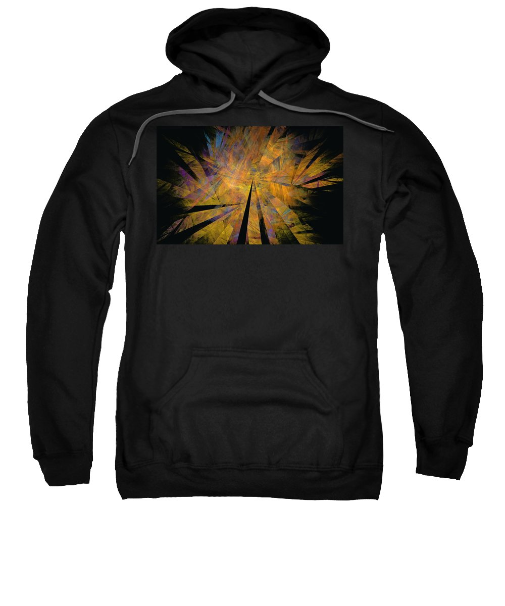 Abstract Expressionism Sweatshirt featuring the digital art Autumnal by David Lane