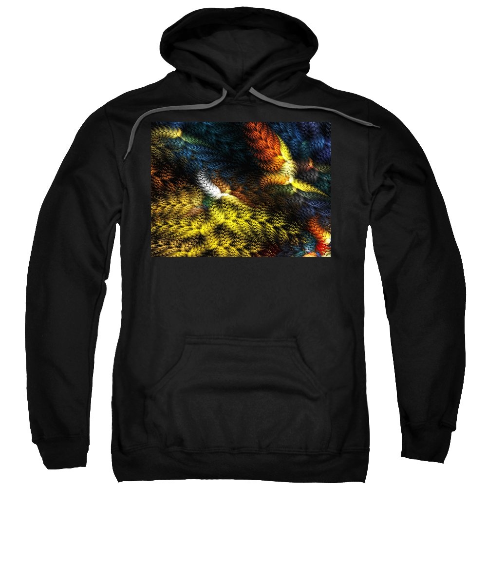 Digital Painting Sweatshirt featuring the digital art Avian Dreams 2 by David Lane