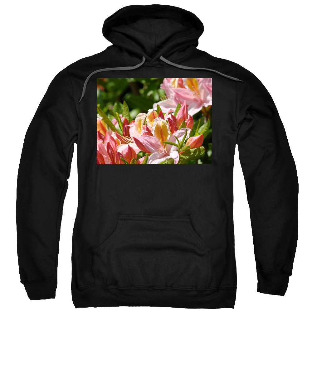 �azaleas Artwork� Sweatshirt featuring the photograph Azaleas Pink Orange Yellow Azalea Flowers 6 Summer Flowers Art Prints Baslee Troutman by Baslee Troutman
