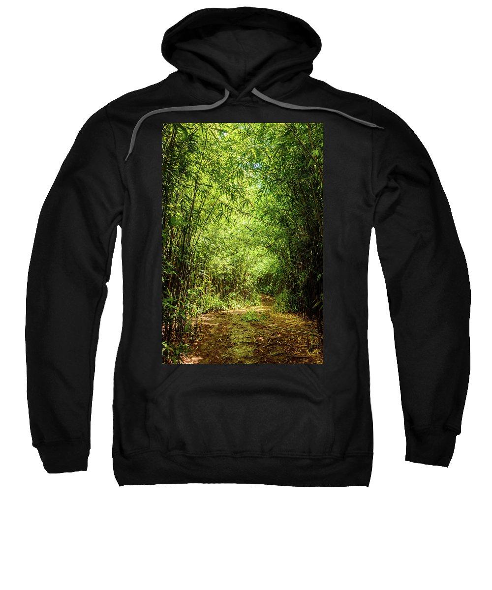 Climate Sweatshirt featuring the photograph Bamboo Hike by Cory Huchkowski