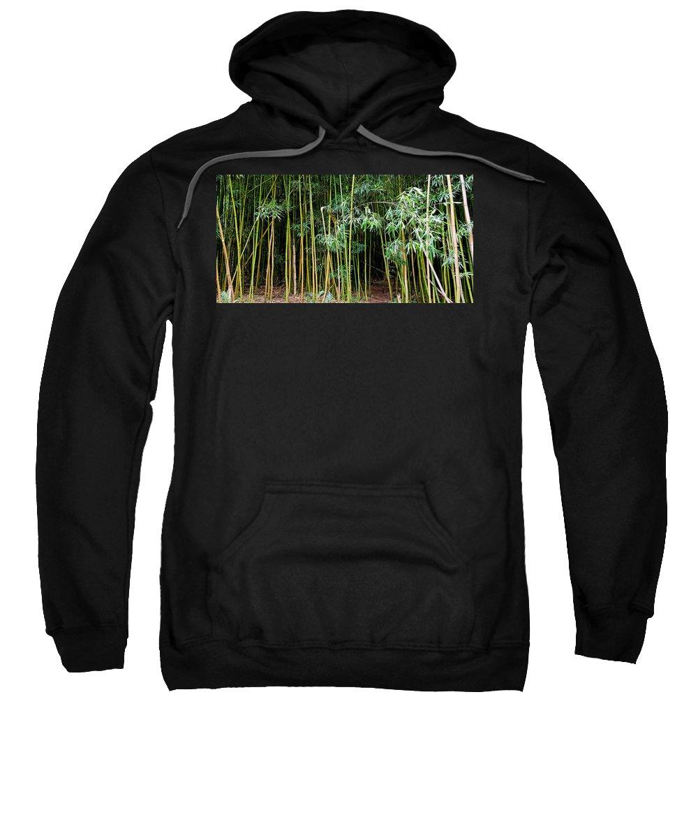 Bamboo Wind Chimes Sweatshirt featuring the photograph Bamboo Wind Chimes Waimoku Falls Trail Hana Maui Hawaii by Michael Bessler