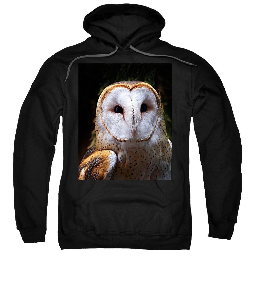 Barn Owl Sweatshirt featuring the photograph Barn Owl by Anthony Jones