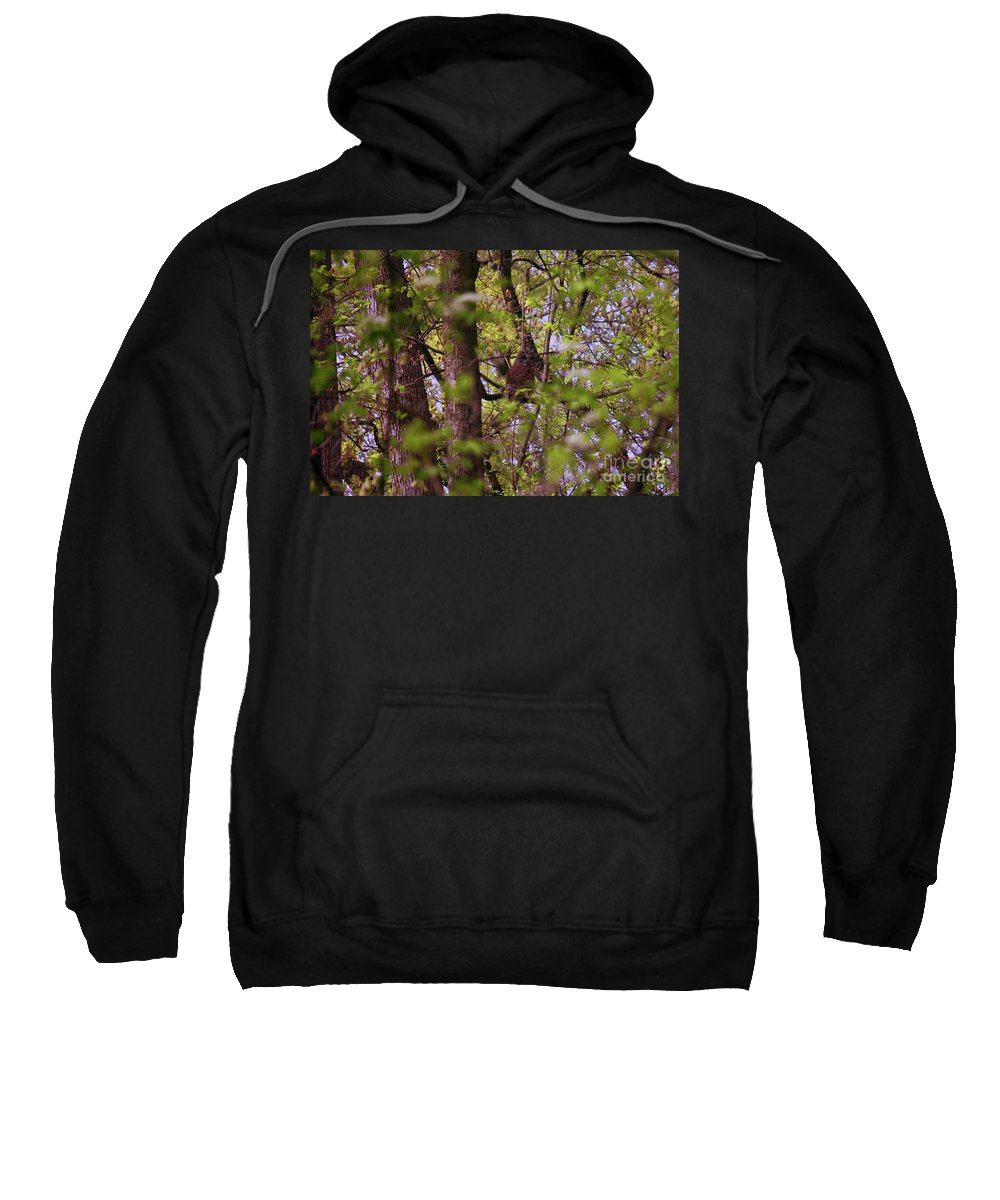 Nature Sweatshirt featuring the photograph Barred Owl In The Forest by Laura Birr Brown