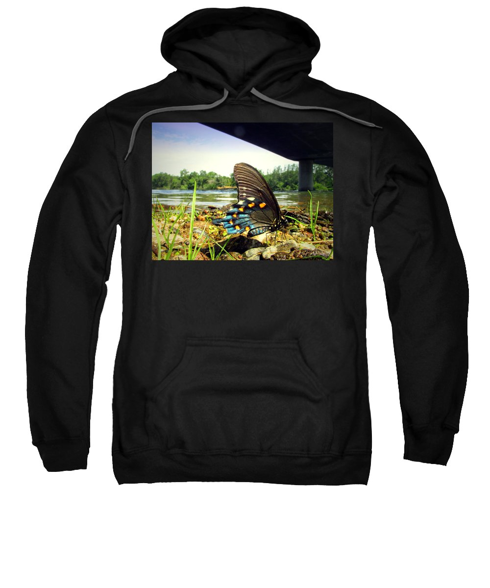 Butterfly Sweatshirt featuring the photograph Beautiful Butterfly At The River II by Joyce Dickens