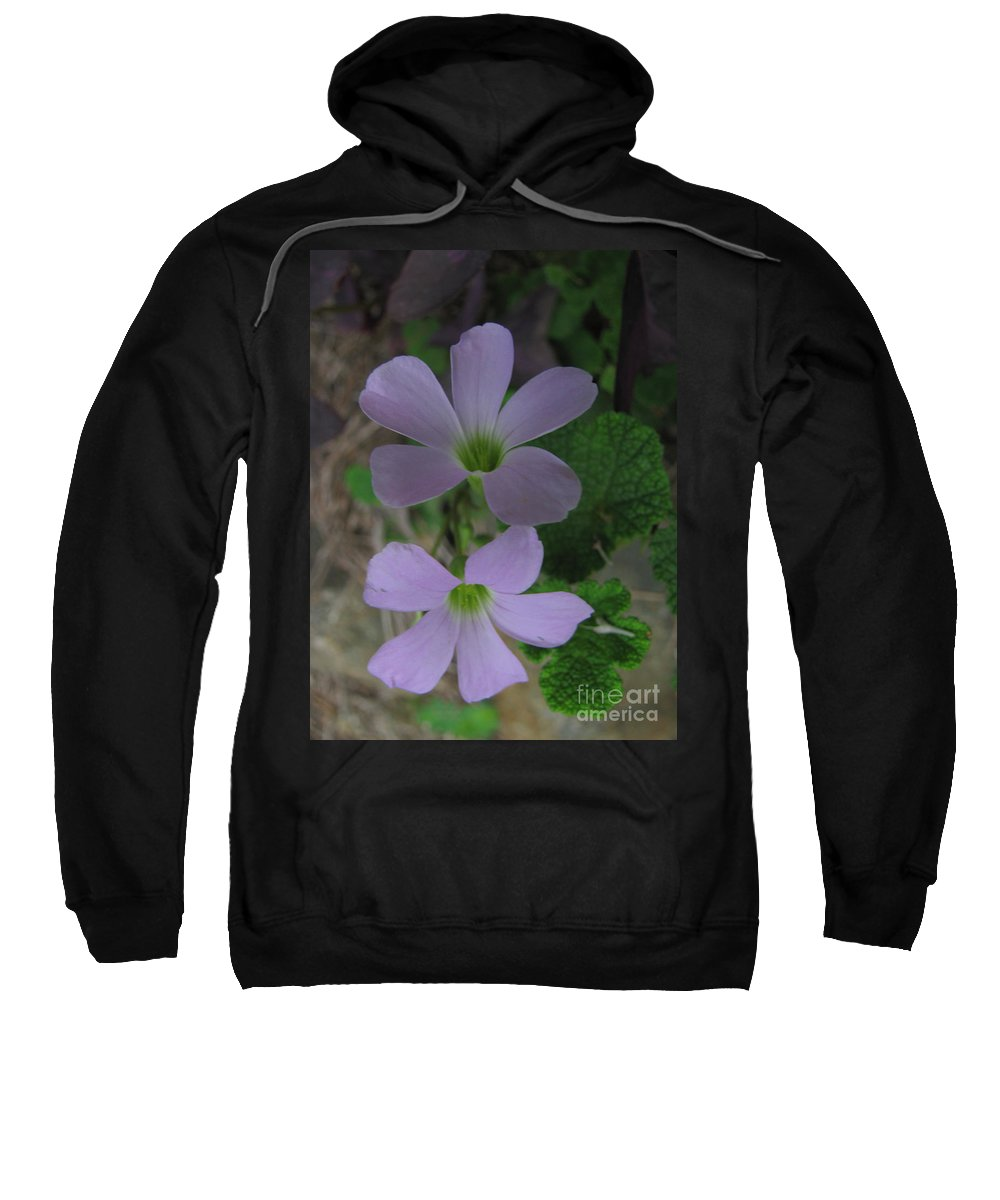 Flower Sweatshirt featuring the photograph Beautiful Flowers by Donna Brown