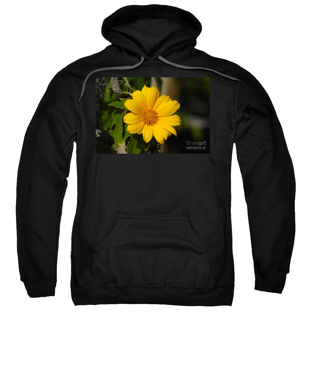 Yellow Sweatshirt featuring the photograph Beautiful In Yellow by David Lee Thompson