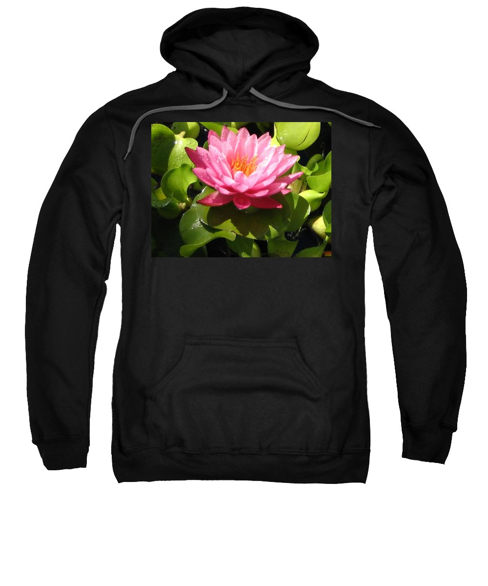 Nature Sweatshirt featuring the photograph Beautiful by Line Gagne