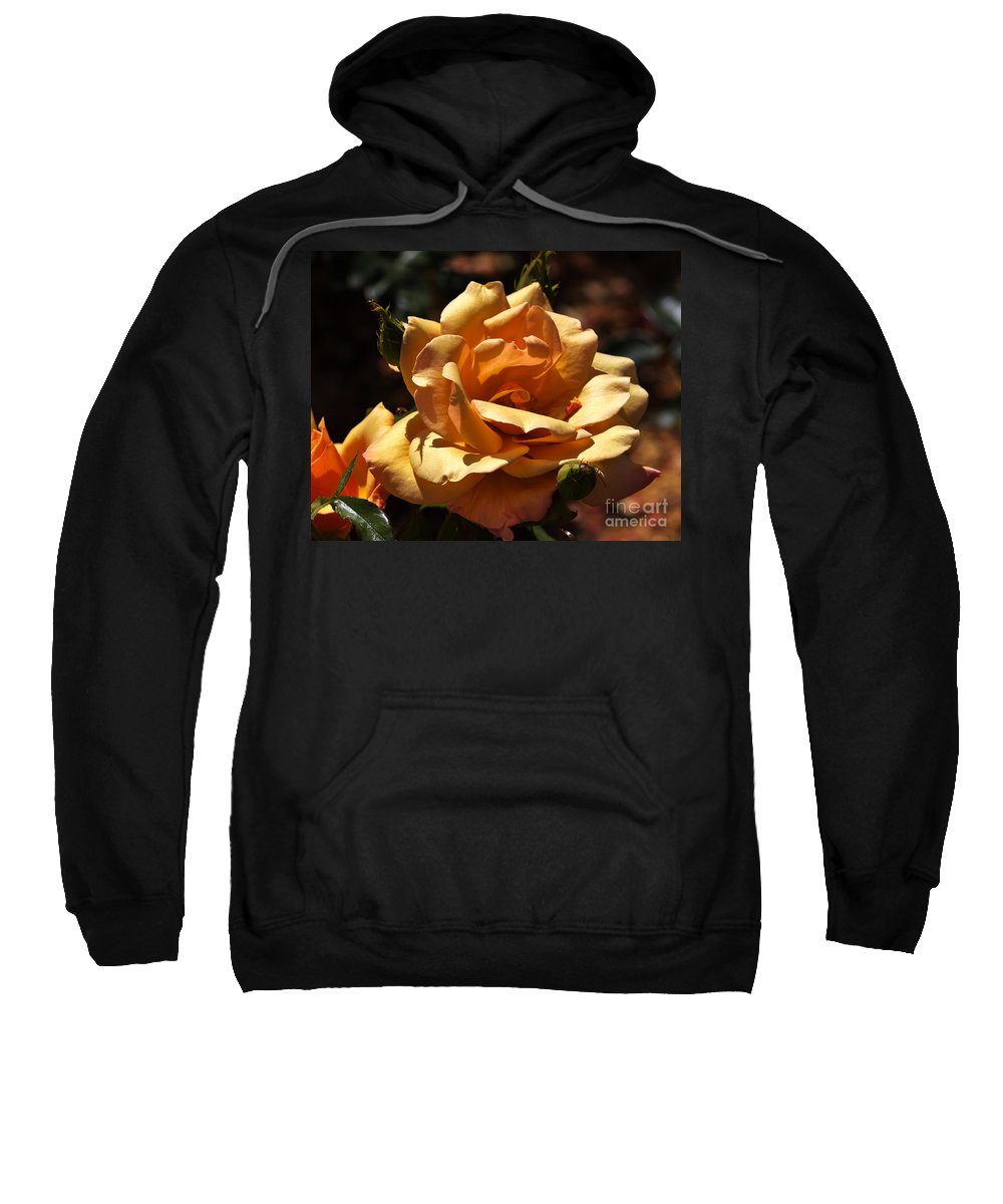 Rose Sweatshirt featuring the photograph Beautiful Yellow Rose Belle Epoque by Louise Heusinkveld