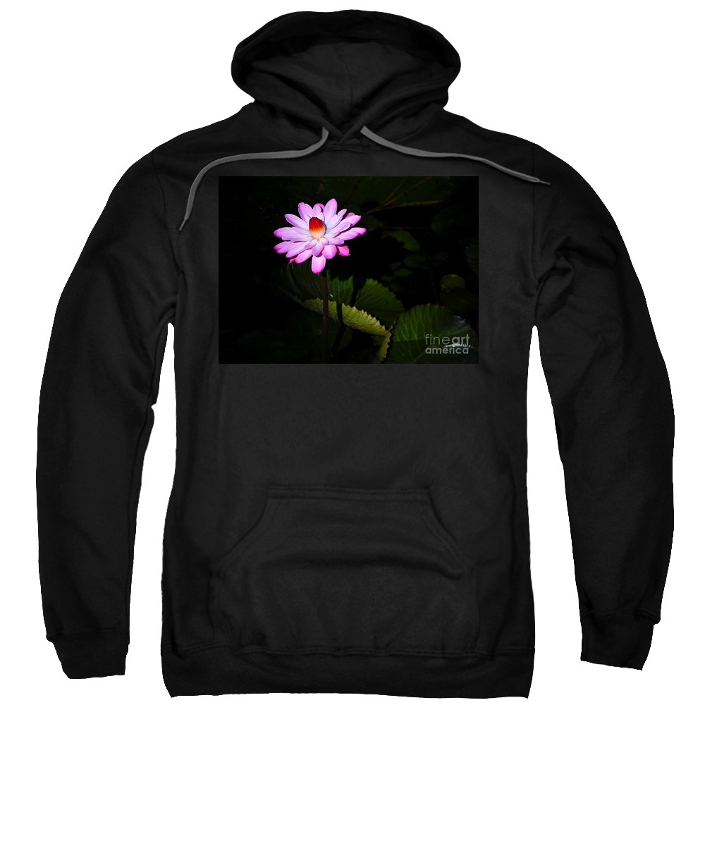Flower Sweatshirt featuring the photograph Beauty From The Shadows by David Lee Thompson
