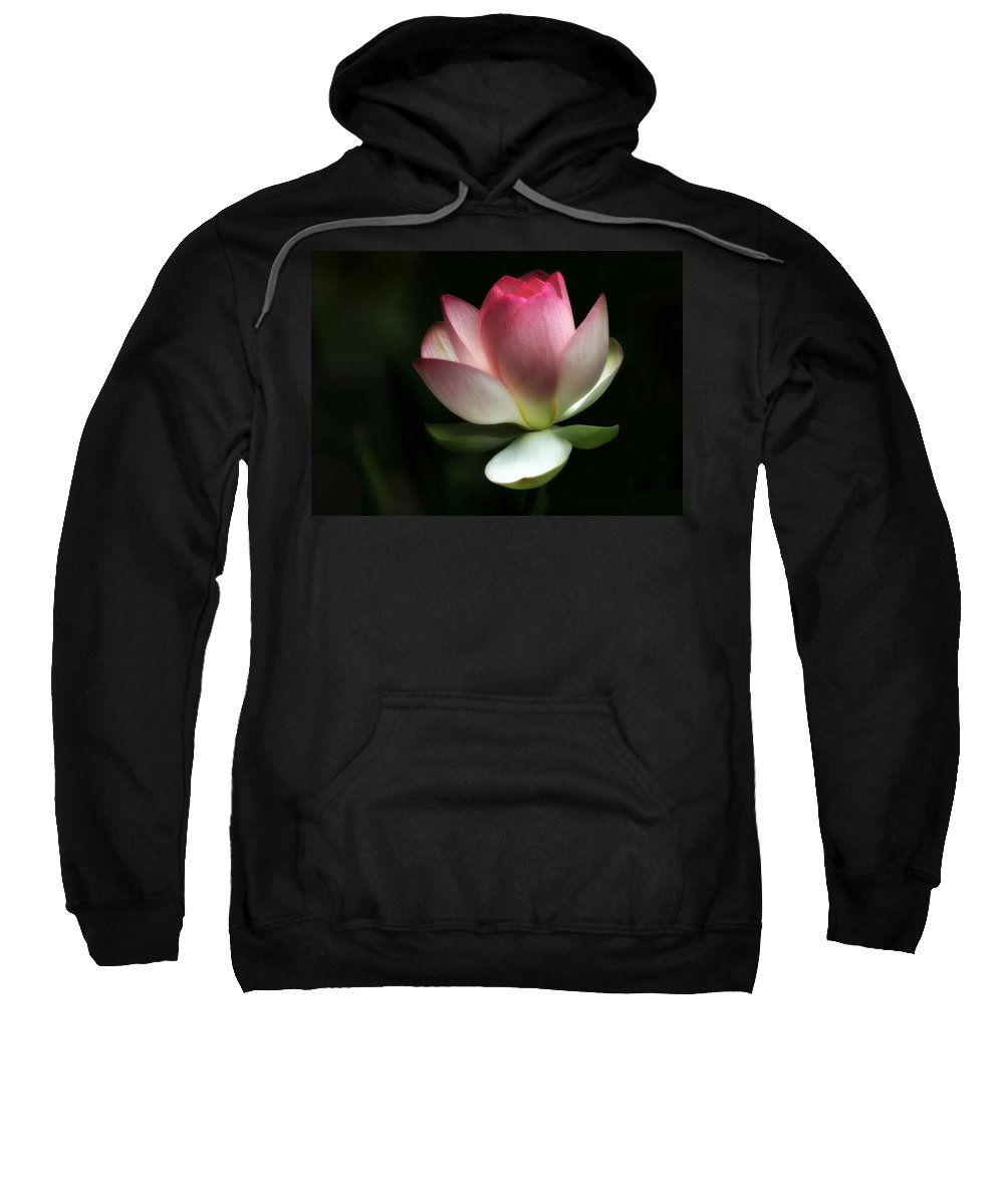 Lotus Sweatshirt featuring the photograph Beauty In Nature by Sabrina L Ryan