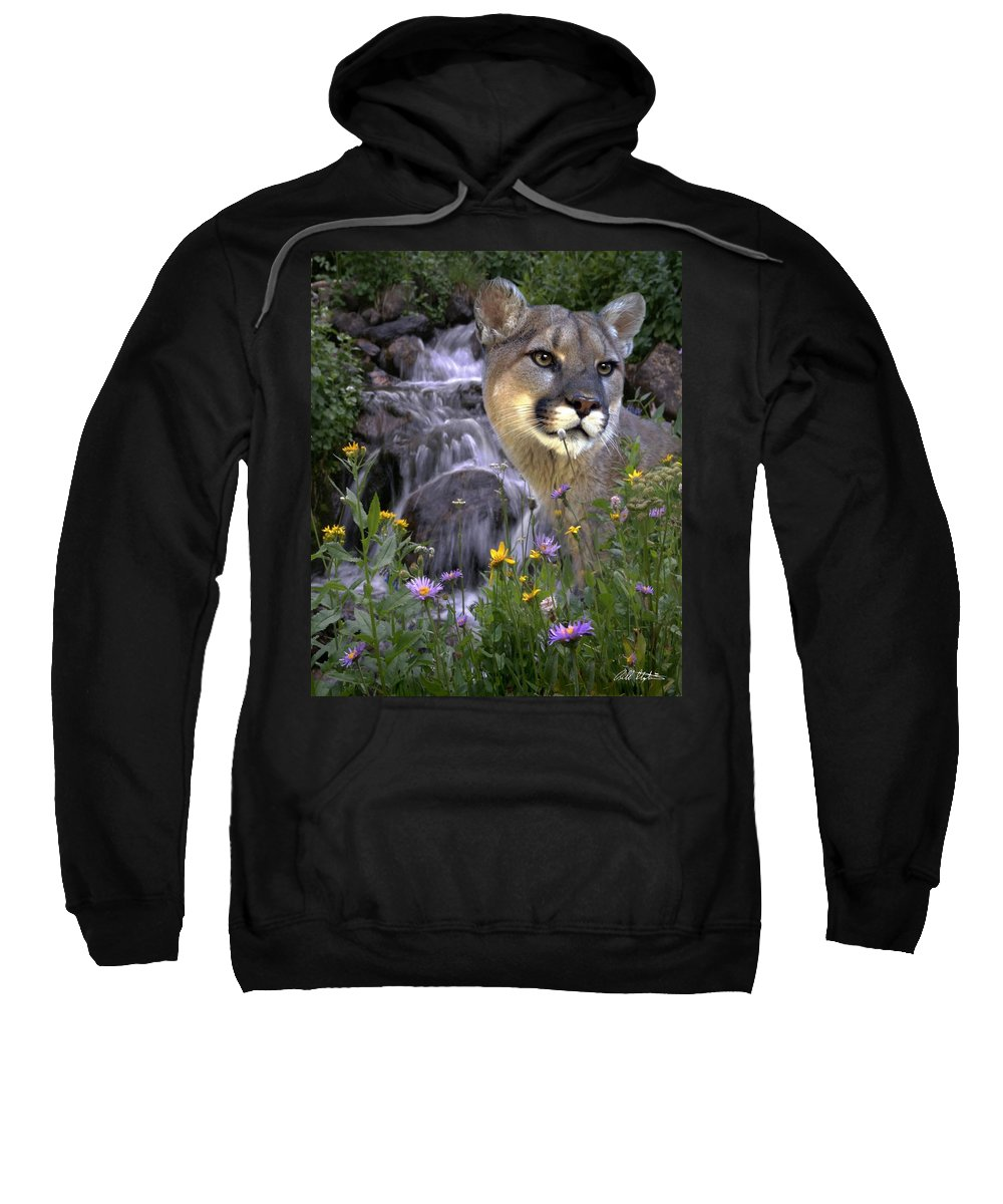 Wildlife Sweatshirt featuring the mixed media Beauty On The Mountain by Bill Stephens