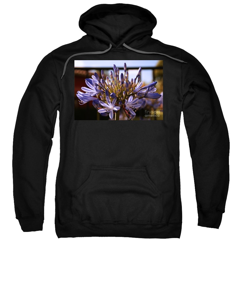 Floral Sweatshirt featuring the photograph Becoming Beautiful by Linda Shafer