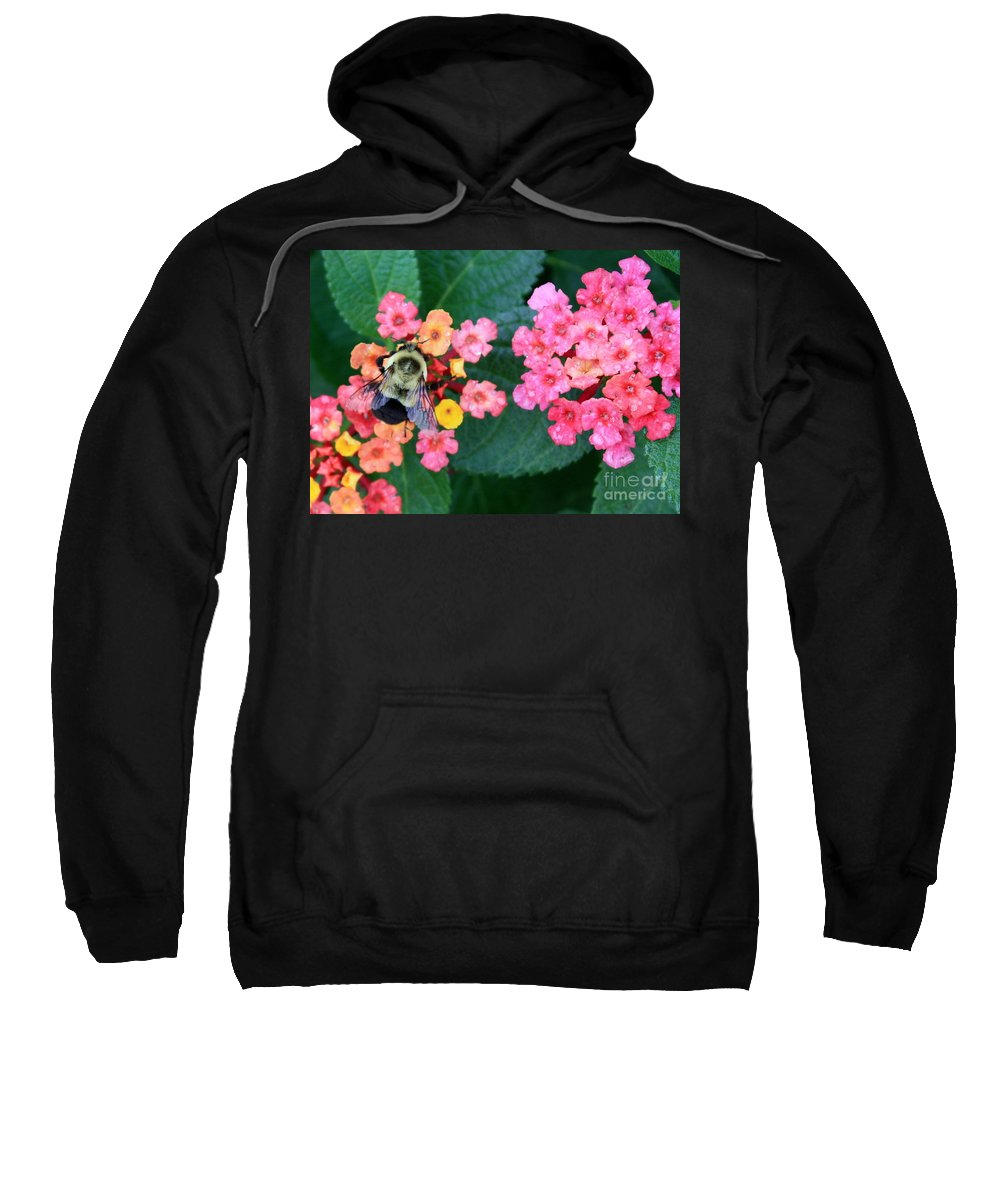 Bee Sweatshirt featuring the photograph Bee On Rainy Flowers by Carol Groenen