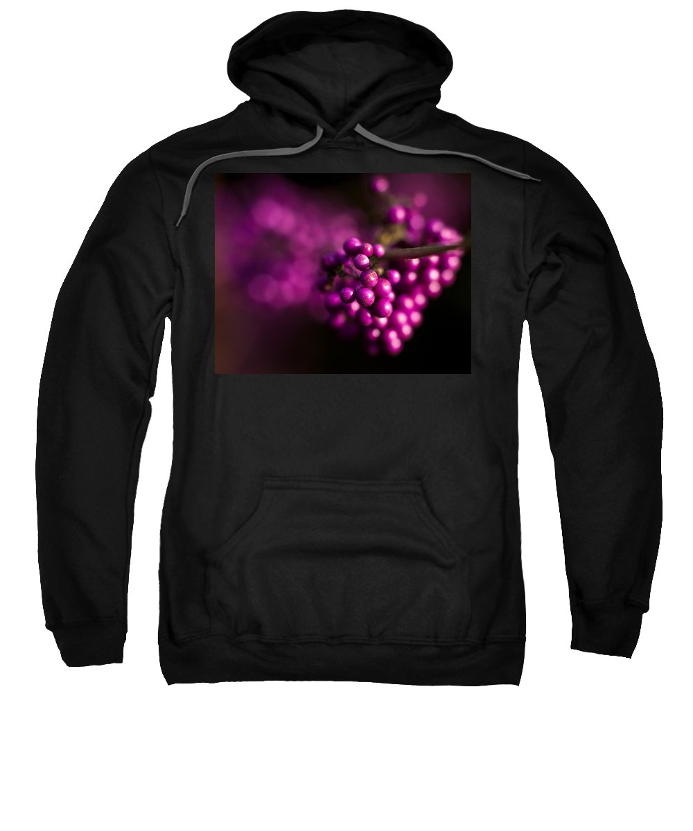 Beauty Berries Sweatshirt featuring the photograph Berries Still Life by Mike Reid