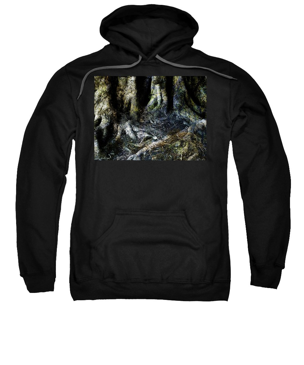 Tree Sweatshirt featuring the photograph Beyond The Forest Edge by Kelly Jade King