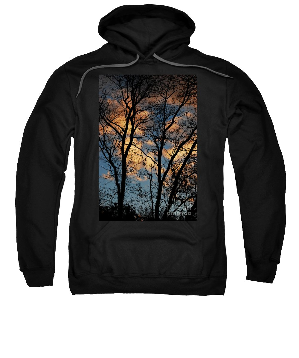 Landscape Sweatshirt featuring the photograph Beyond The Trees by Lori Tambakis