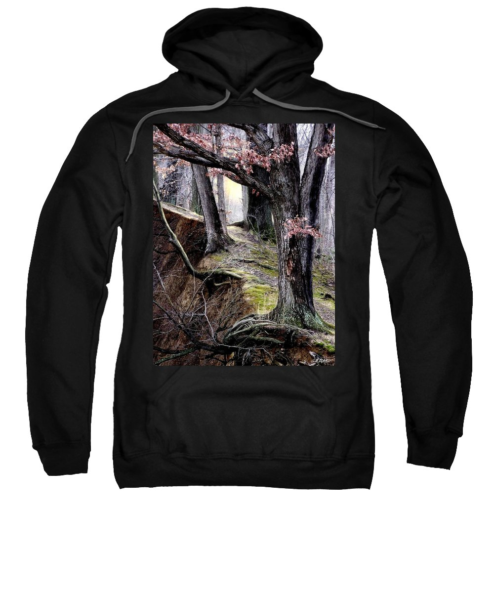 Nature Sweatshirt featuring the digital art Bilbow's Path by Bill Stephens