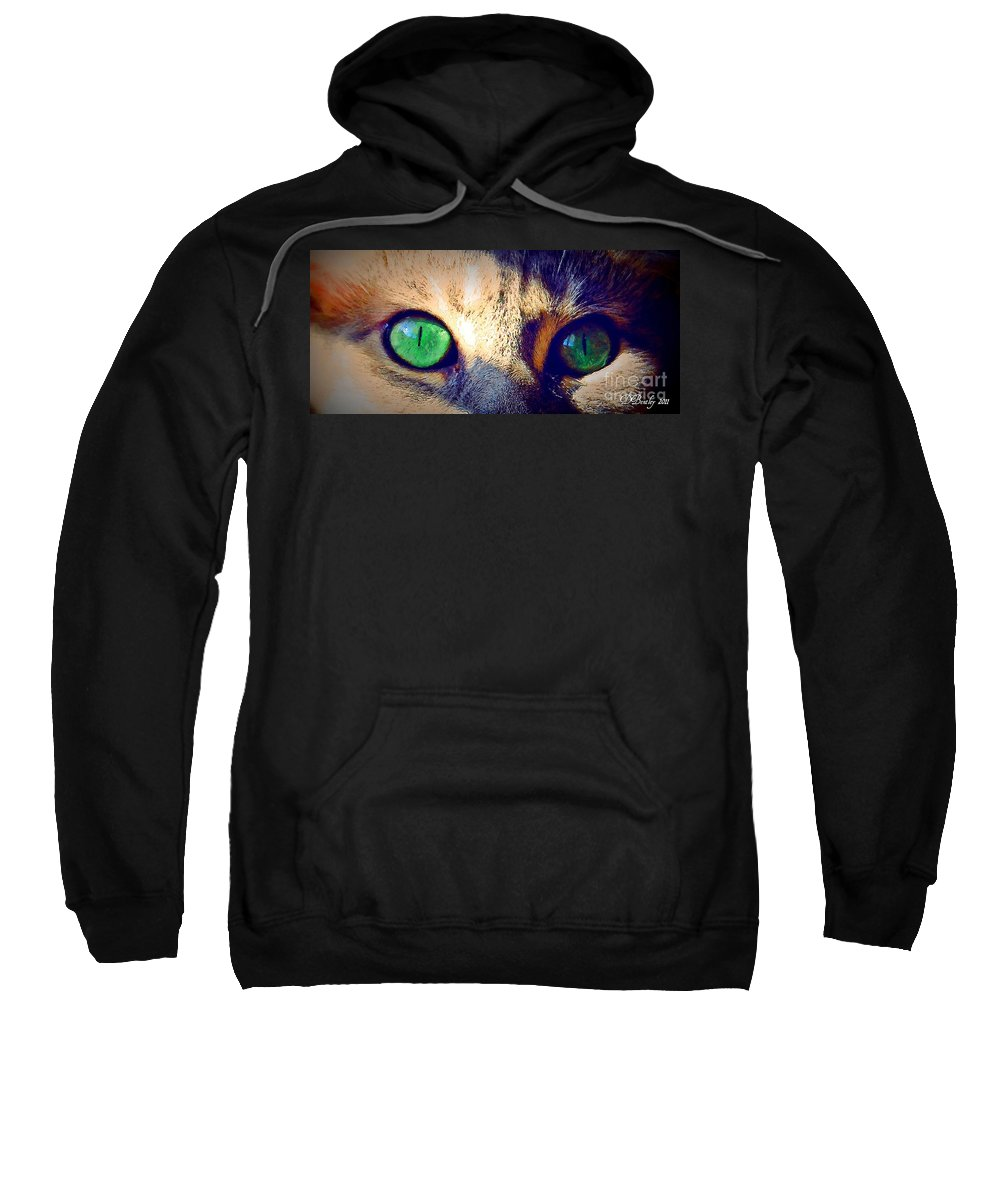 Cat Sweatshirt featuring the photograph Bink Eyes by Donna Bentley