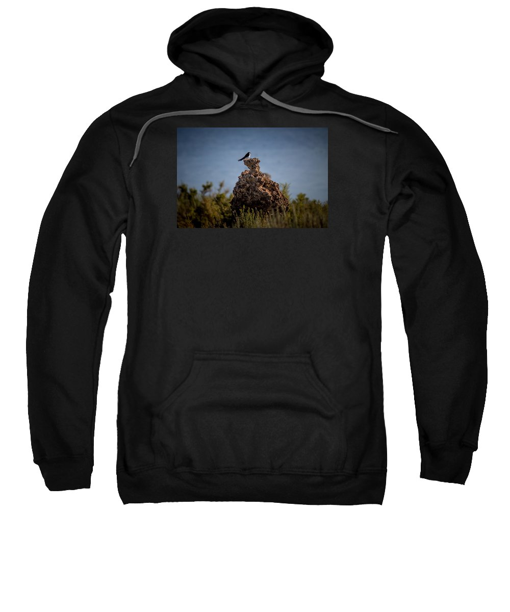 Sweatshirt featuring the photograph Bird by Reed Tim