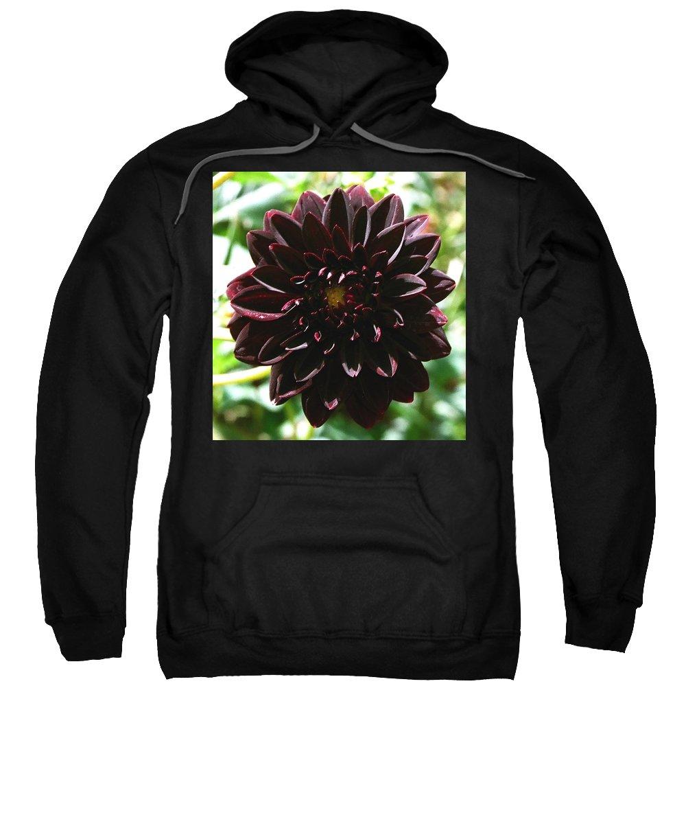 Flower Sweatshirt featuring the photograph Black Dalia by Dean Triolo