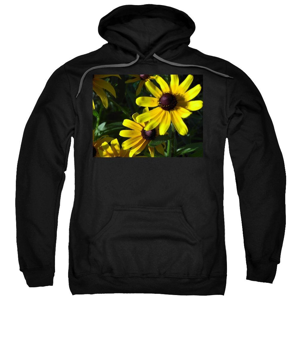 Charity Sweatshirt featuring the photograph Black Eyed Susan by Mary-Lee Sanders