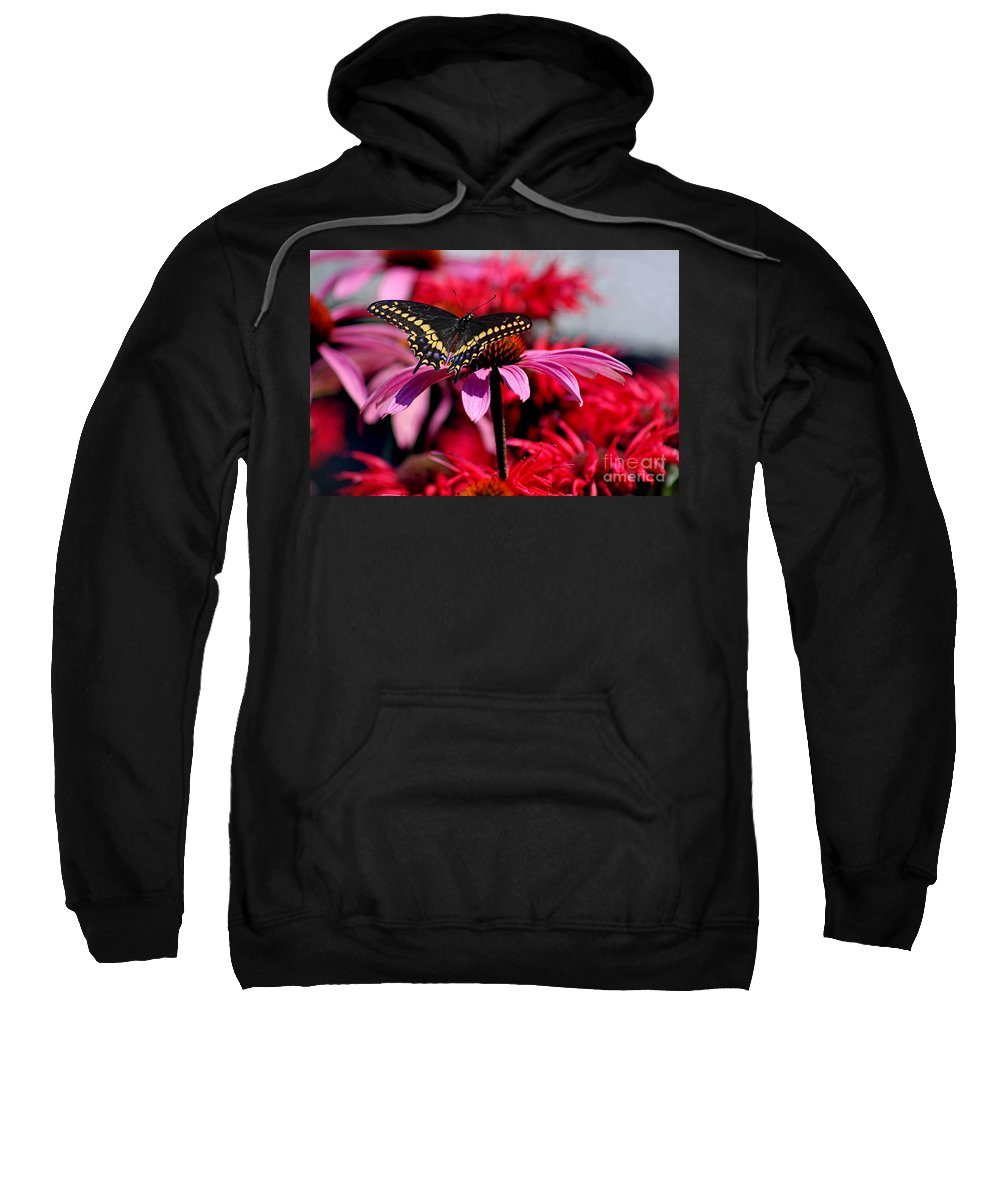 Insect Sweatshirt featuring the photograph Black Swallowtail Butterfly With Coneflowers And Bee Balm by Karen Adams