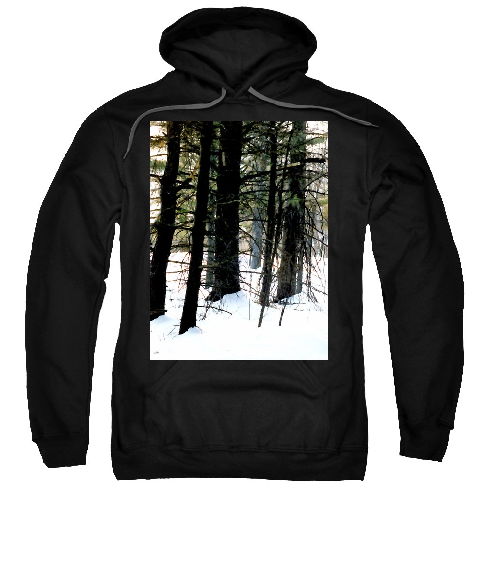 Snow Sweatshirt featuring the painting Blanketed In Snow by Paul Sachtleben