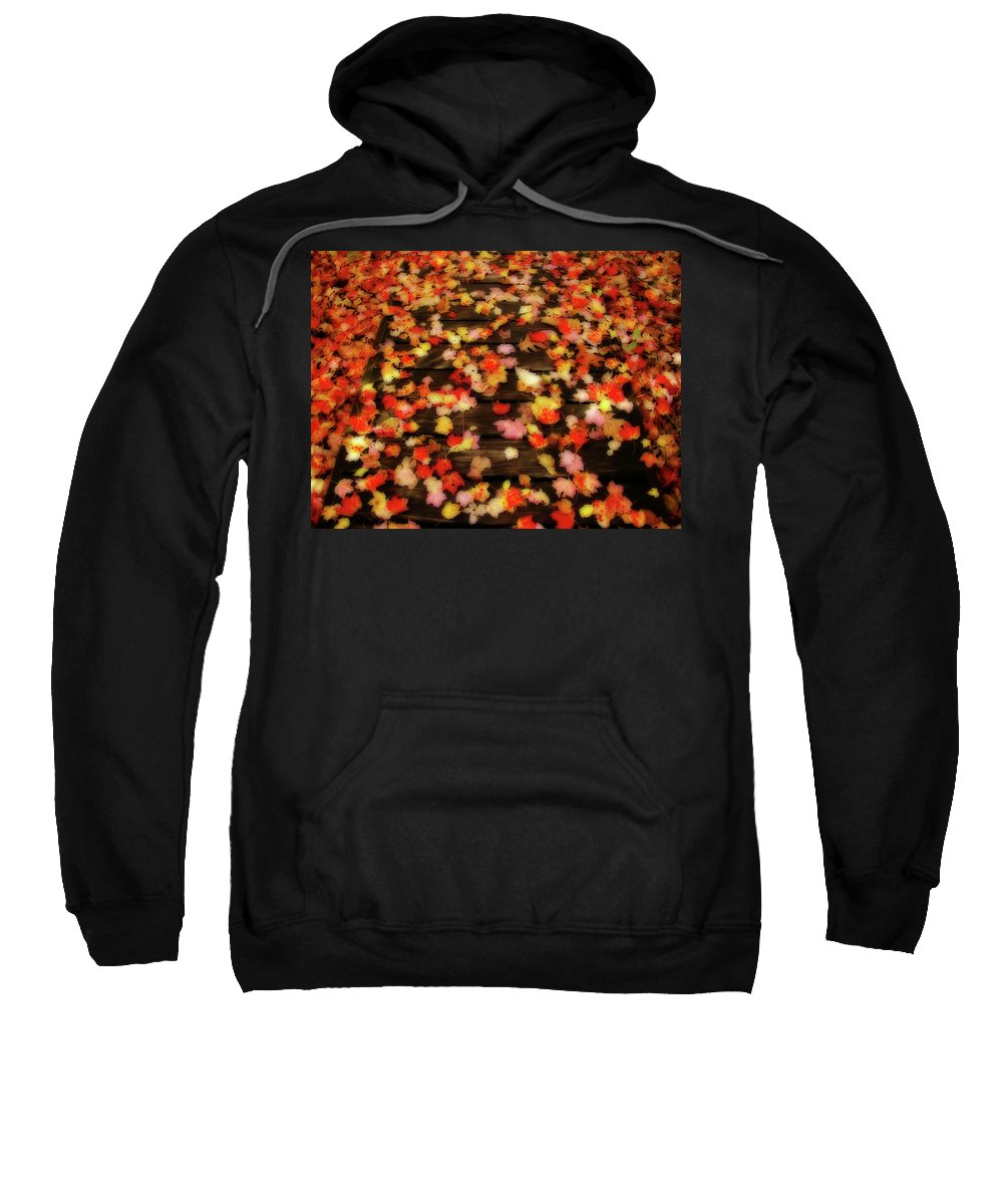 Leaves Sweatshirt featuring the photograph Blazen Leaves by Shelley Neff