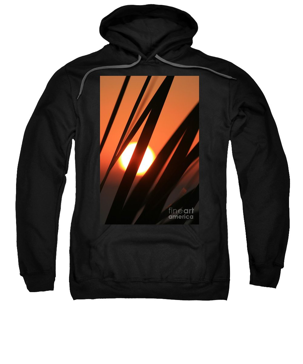 Sun Sweatshirt featuring the photograph Blazing Sunset And Grasses by Nadine Rippelmeyer